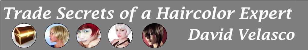 Trade Secrets of a Haircolor Expert